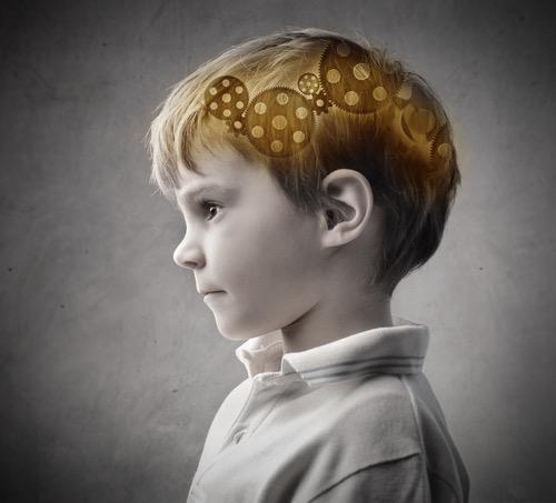 3歳までに両方の言語回路を発達させる重要性