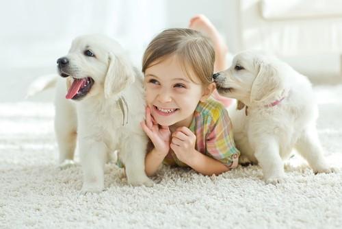 子供が好きな動物をテーマに子供英語学習をしてみよう!-01