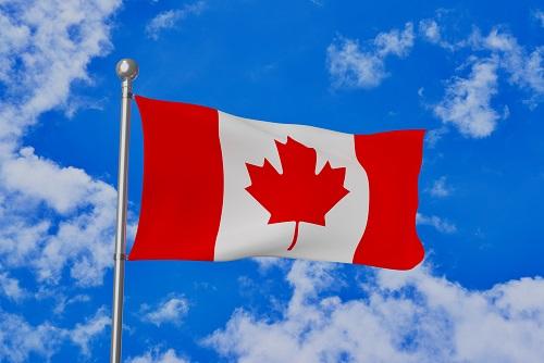 カナダの離乳食事情