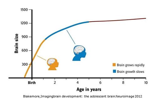 乳幼児期の科学に基づいた子育てが、子供の順調な発達につながる