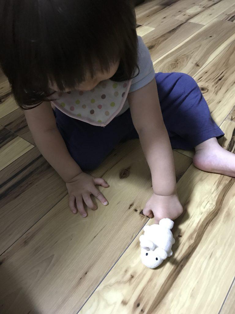 1歳8ヶ月 CAPに挑戦するの画像