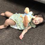【娘】1歳5ヶ月のプレイアロングとZippy and Meの画像